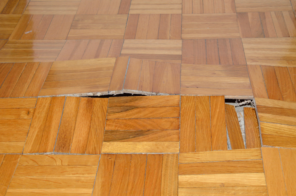 Sanding, Refinishing, Restoring: How To Tell What Your Wood Floors Need And When They Need It